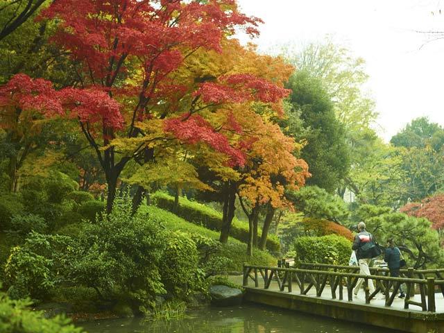 「広尾 有栖川公園」の画像検索結果